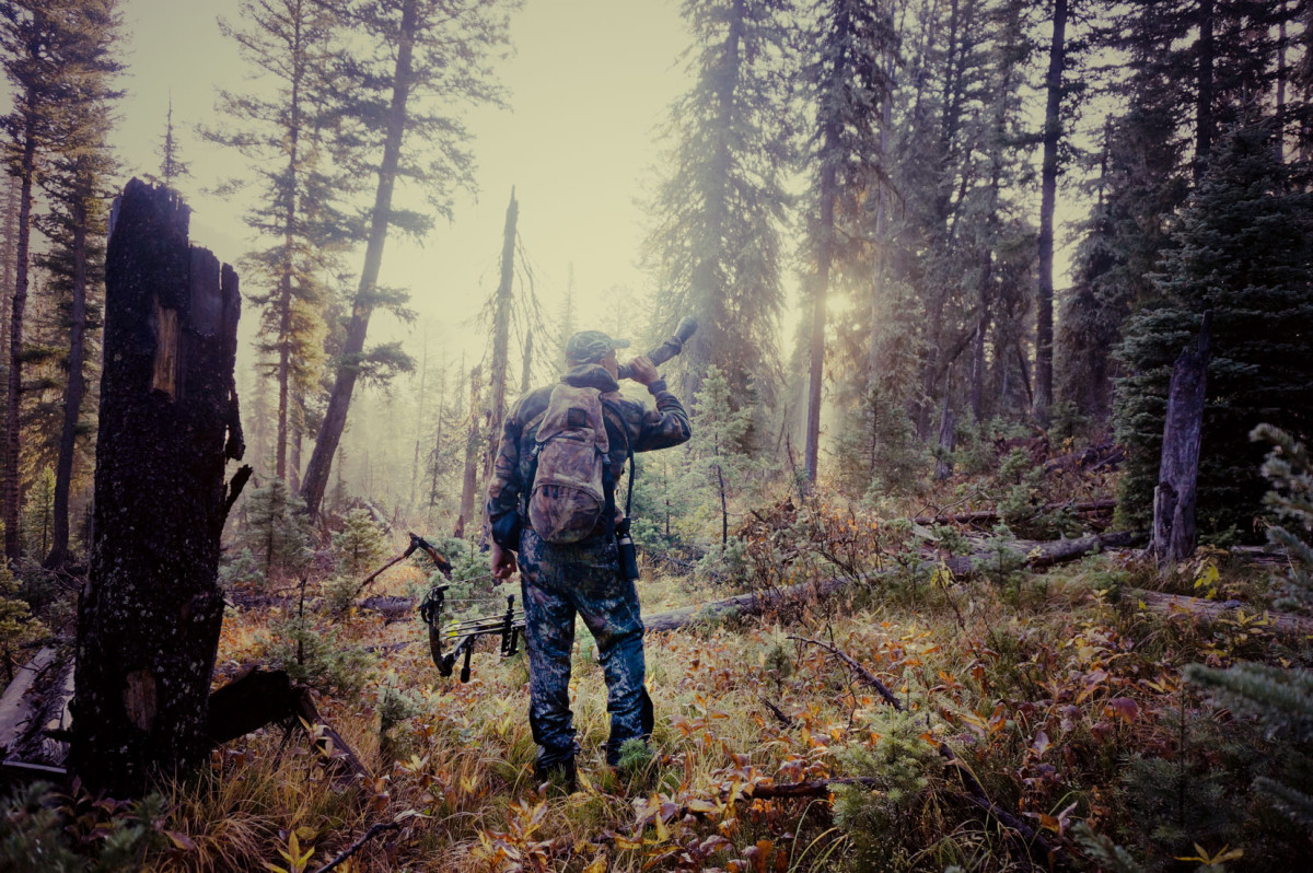 Bow hunting for elk in Montana.